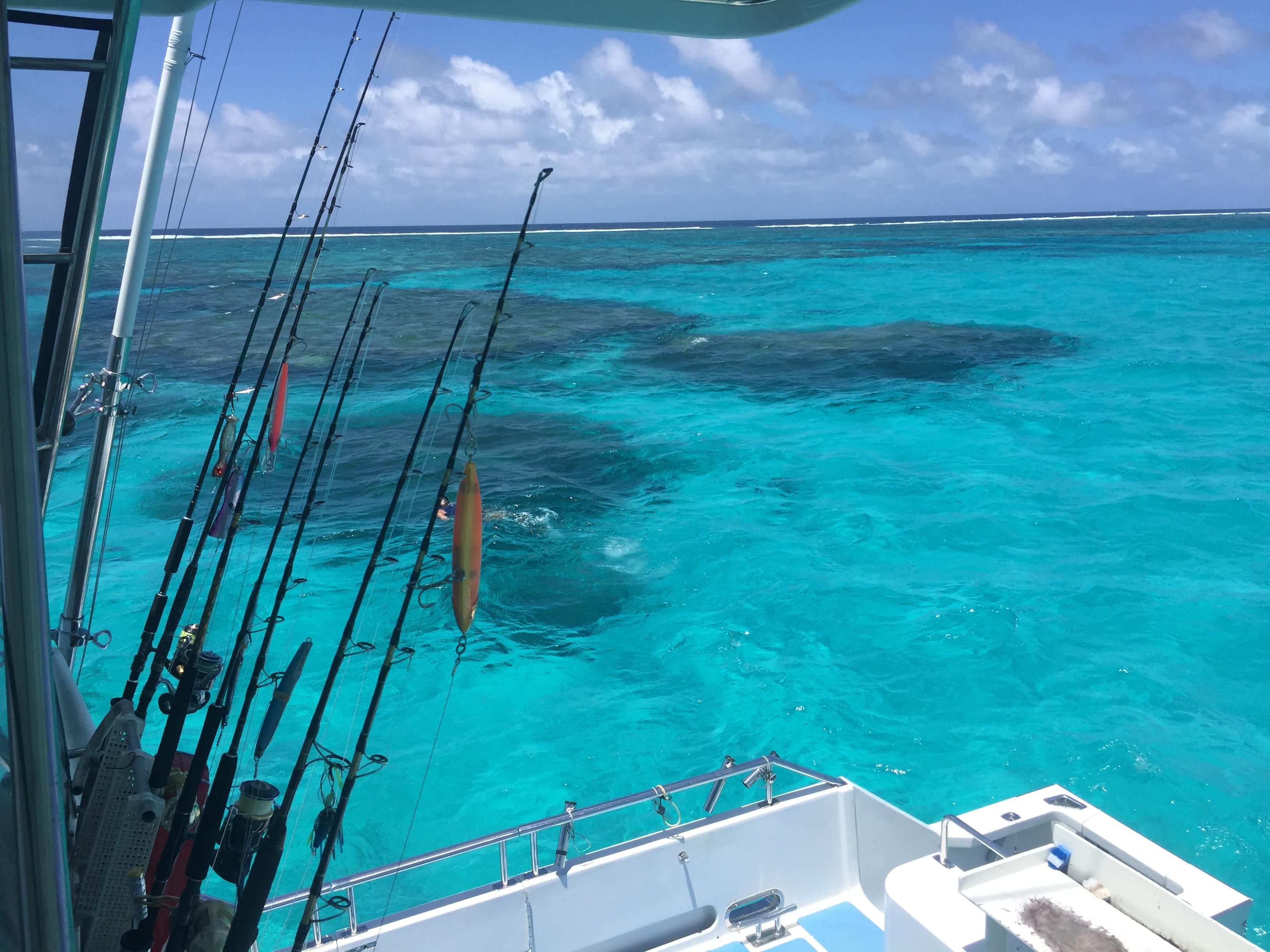 New Cal Reef