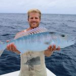 Job fish new caledonia