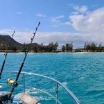 Great Barrier Reef Lizard Island