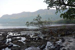 Ureparapara, vanuatu village, mangrove, sport fishing vanuatu