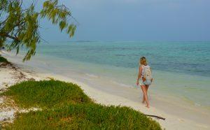 Vanuatu, rows shoals, sport fishing vanuatu, game fishing vanuatu, marlin fishing vanuatu, marlin, banks islands