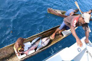 Trading with natives, Vanuatu