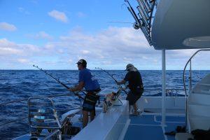 Whanganella Banks, New Zealand marlin fishing,